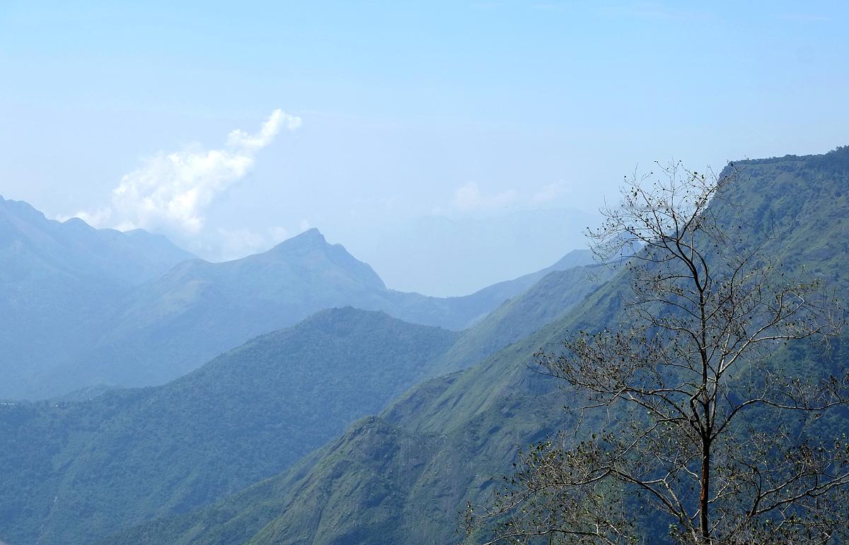Kodaikanal hills